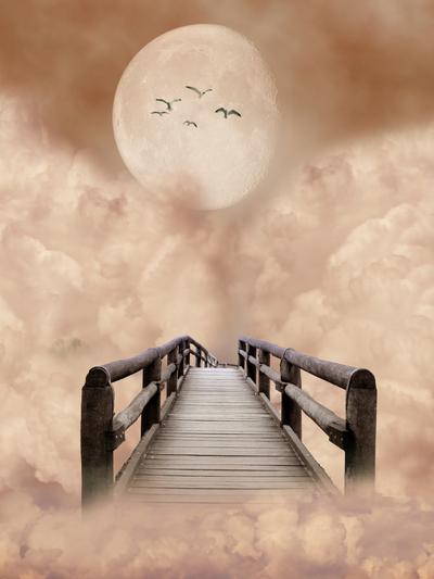 Dreamstime_1138017
